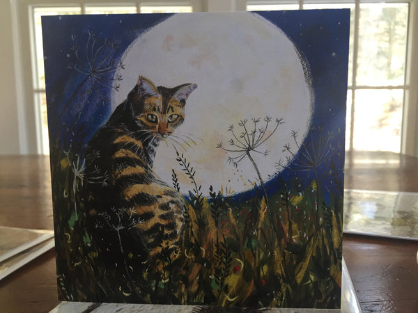 The Cat and the Moon by Annabel Langrish