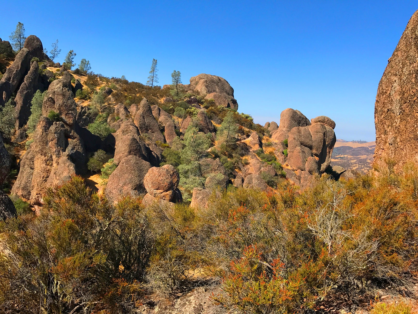 Pinnacles National Park - An Undiscovered Gem