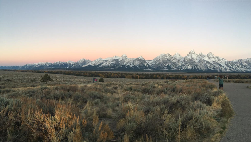 Jackson Hole, Grand Tetons, & Yellowstone
