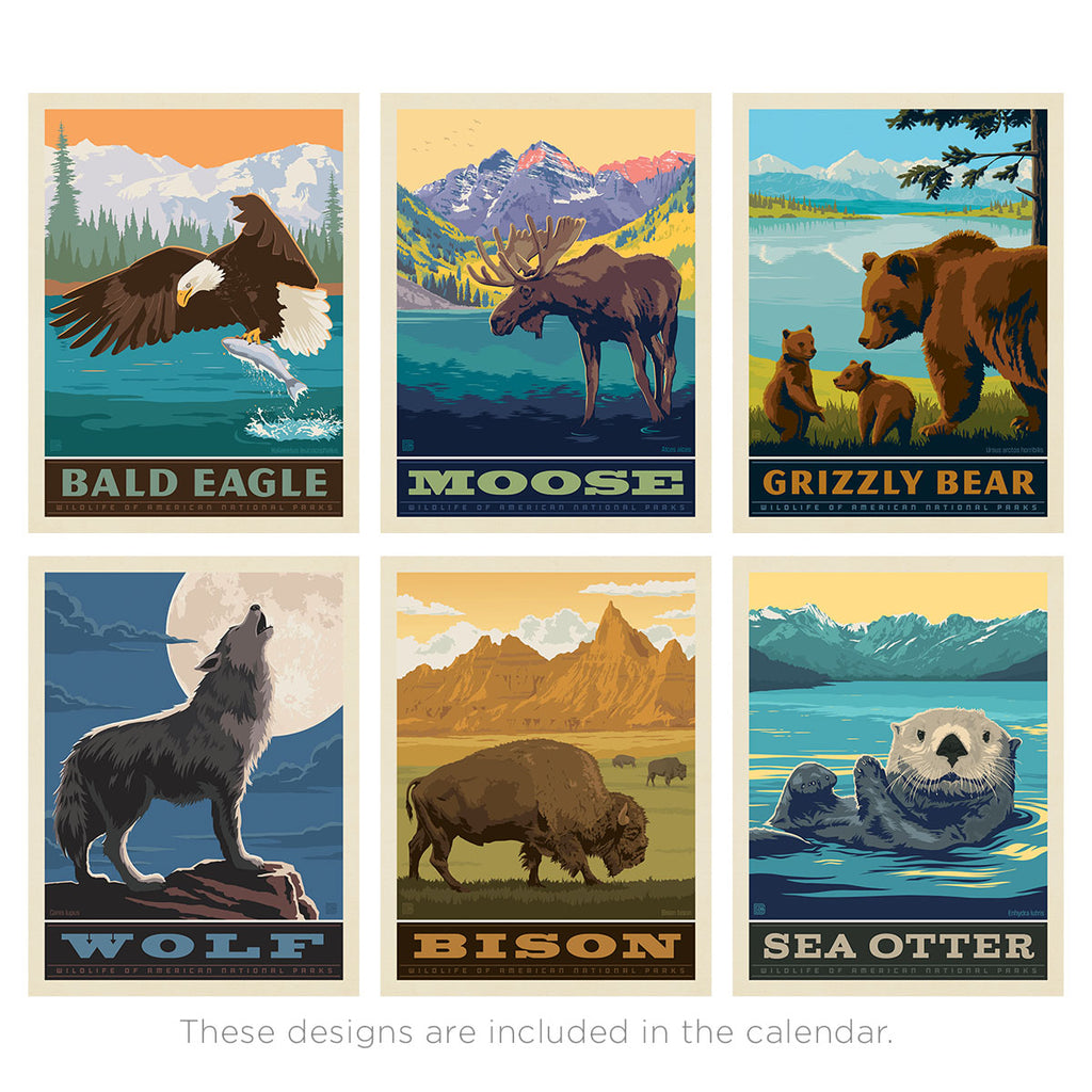 2021 Wall Calendar: National Park Wildlife (Best Seller)