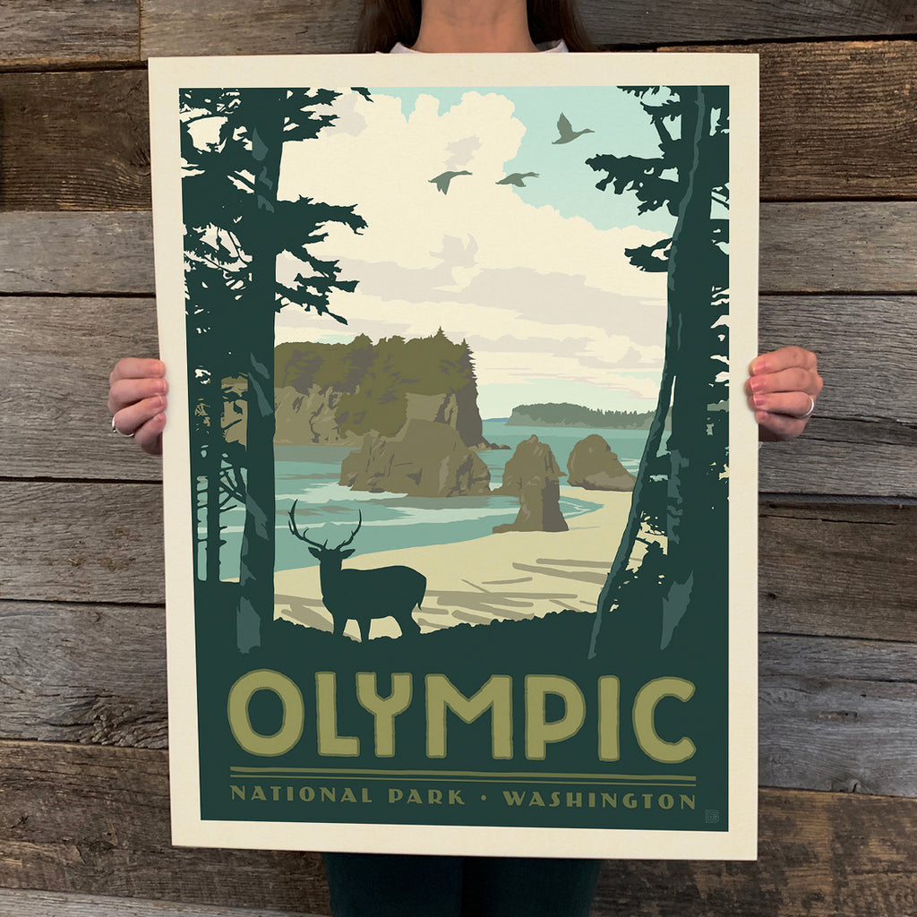 Bargain Bin Print: Olympic National Park (60% OFF!)