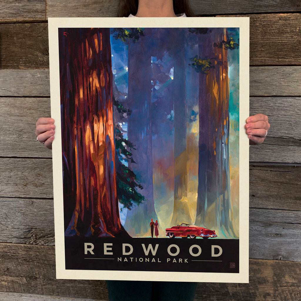 National Parks: Redwood-Among The Giants (Best Seller)