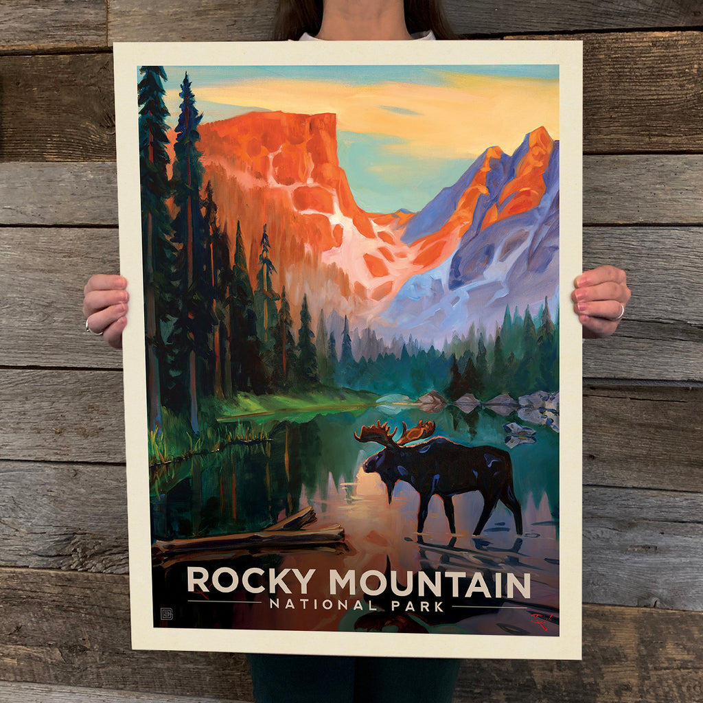 National Parks: Rocky Mountain-Moose In The Morning (Best Seller)