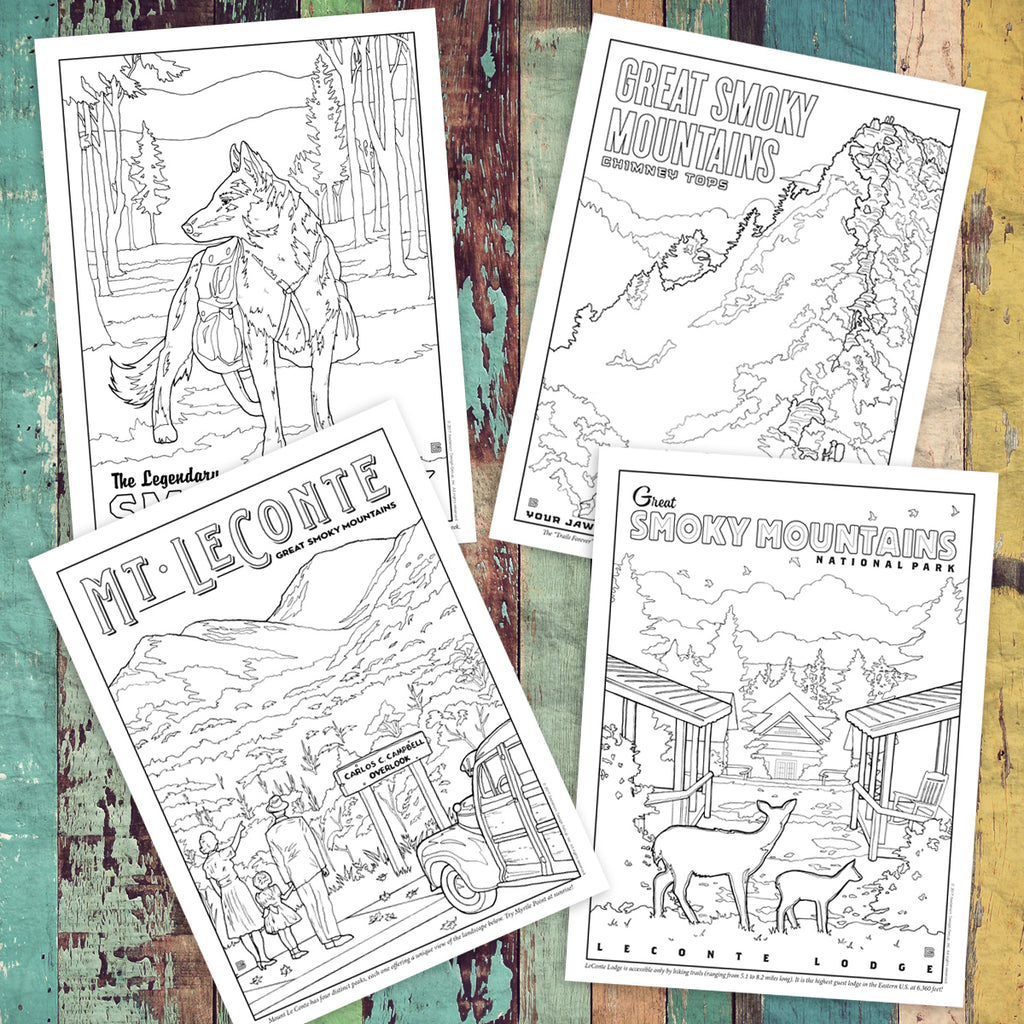 Illustrated Guide to Great Smoky Mountains National Park Coloring Book