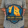 Metal Emblem Sign: NP Carlsbad Caverns National Park