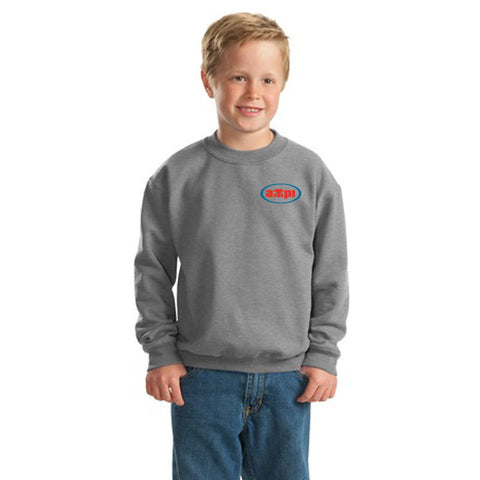 Youth Crewneck Sweatshirt in Sport Gray