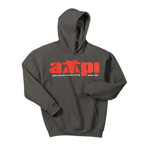 Youth Hooded Sweatshirt in Charcoal - Imprinted