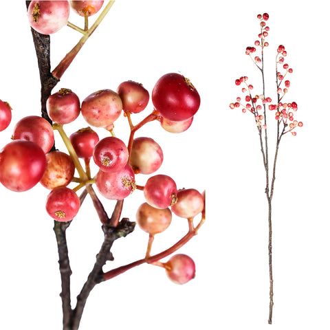 berry bloem dark pink twig with berries