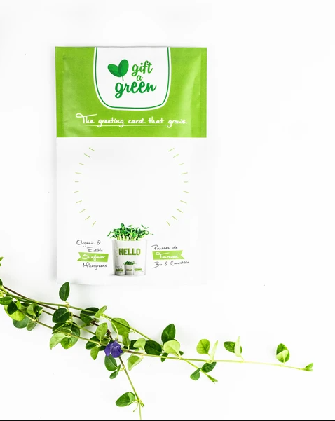 products/Gift-A-Green-Blank-with-Ivy.png