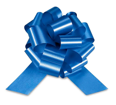 Cellophane Wrapped Container - Navy Blue Bow