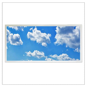 LED 2x4 Flat Panel with Blue Sky Image / 60w 1 6000 ...
