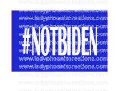 Double sided car flag w/pole 12x15 Made in USA Design as shown #notbiden