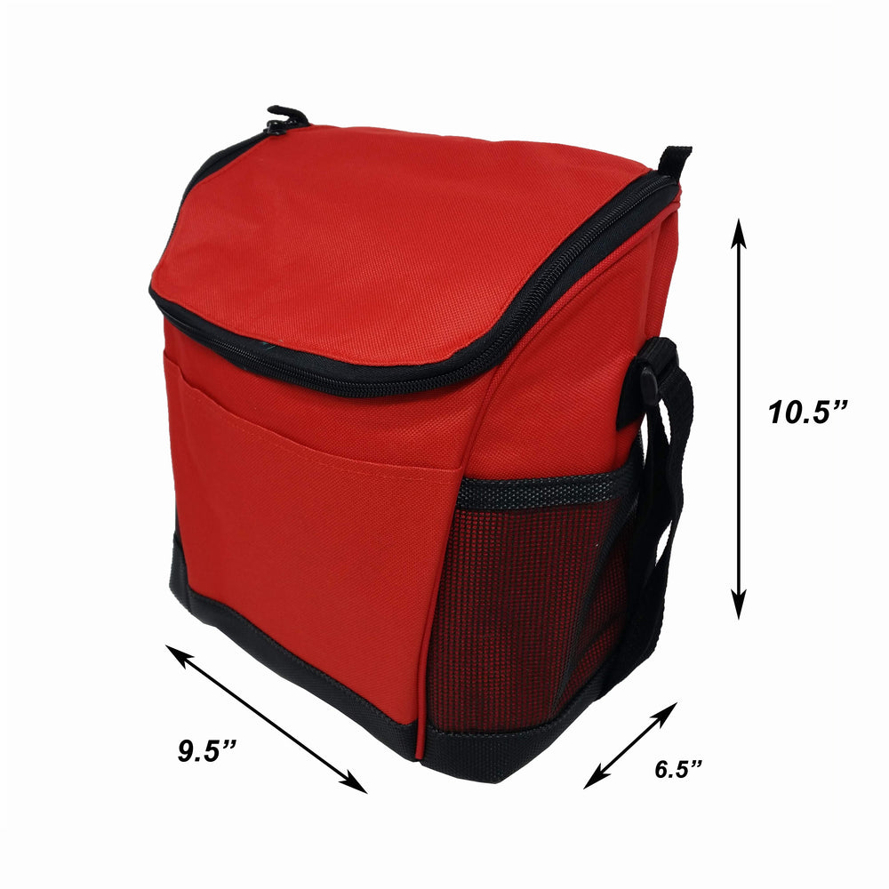 Large Insulated Lunch Bag Reusable Lunch Box Picnic Roomy Compartments Cooler Bag Bottles, Containers Lunch Box for Men, Women, Adjustable Shoulder Strap