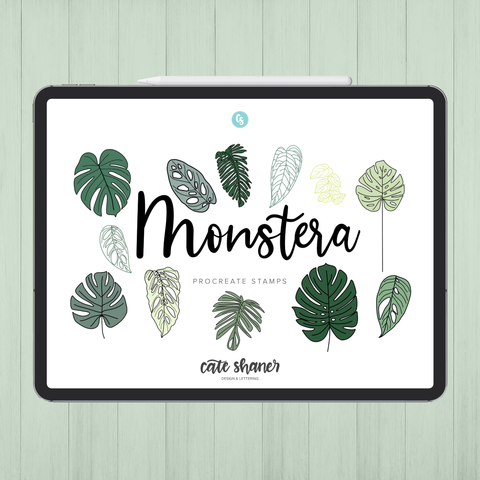 Monstera Procreate Stamps