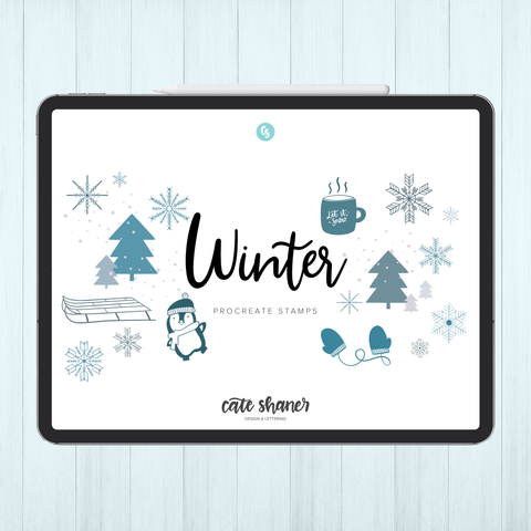 Winter Procreate Stamps