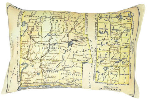Hastings County Vintage Map Pillow