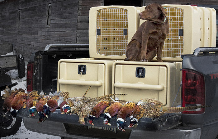 Dakota 283 - Badlands Vault and Kennebec Kennel System