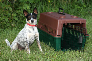 Sportsman's Choice Portable Kennel - Junior