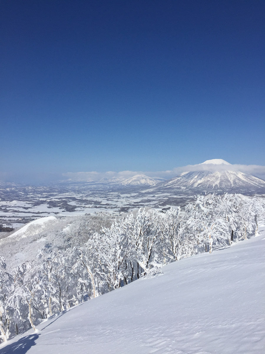 Bluebird Niseko, Japan