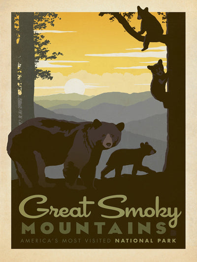 Buy Great Smoky Mountains, National Park Series, 500 Piece Jigsaw Puzzle from Walking Pants Curiosities, the Most un-General Gift Store in Downtown Memphis, Tennessee!