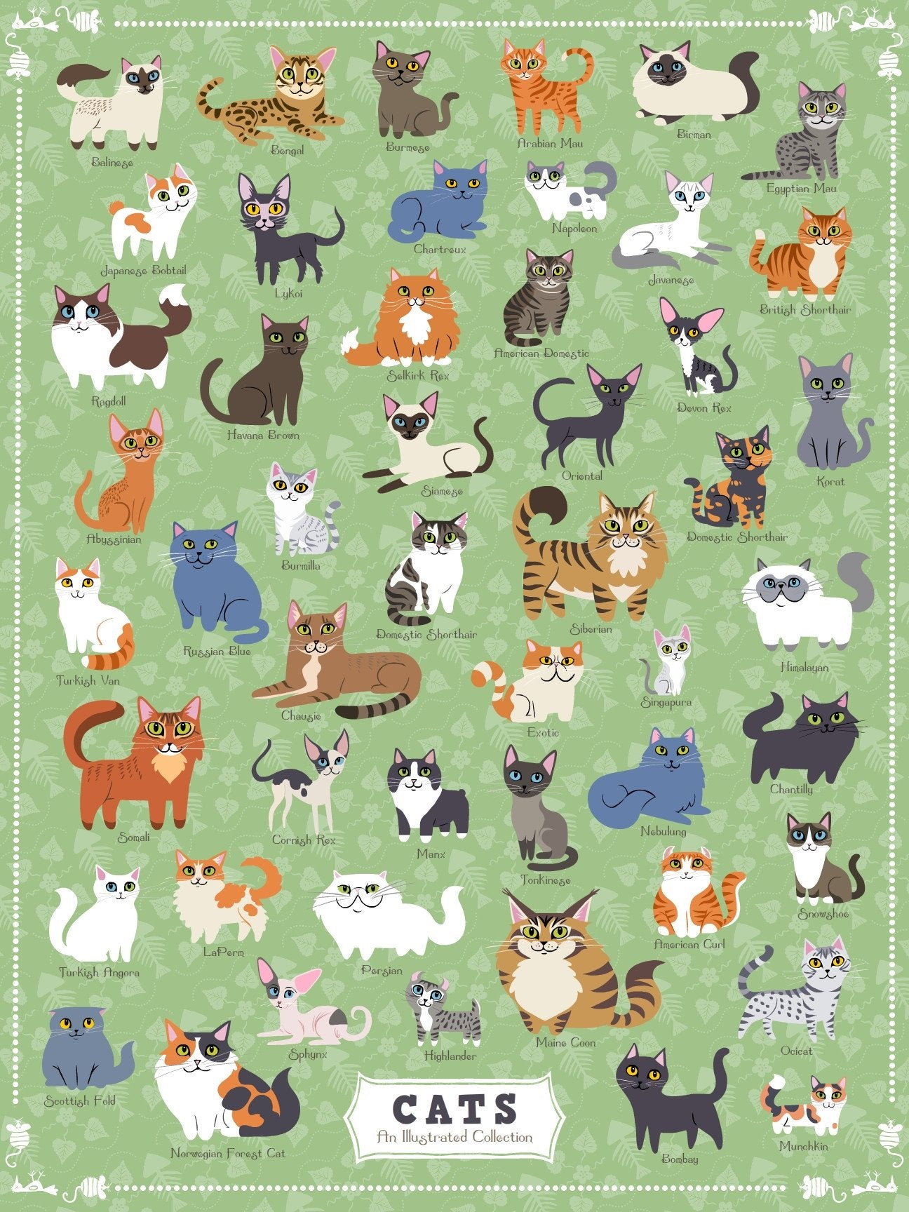 Buy Cats of America, 500 Piece Jigsaw Puzzle from Walking Pants Curiosities, the Most un-General Gift Store in Downtown Memphis, Tennessee!