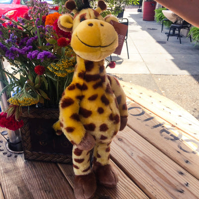 Buy Gerri the Giraffe, the Stuffed Toy Animal Kind from Walking Pants Curiosities, the Most un-General Gift Store in Downtown Memphis, Tennessee!