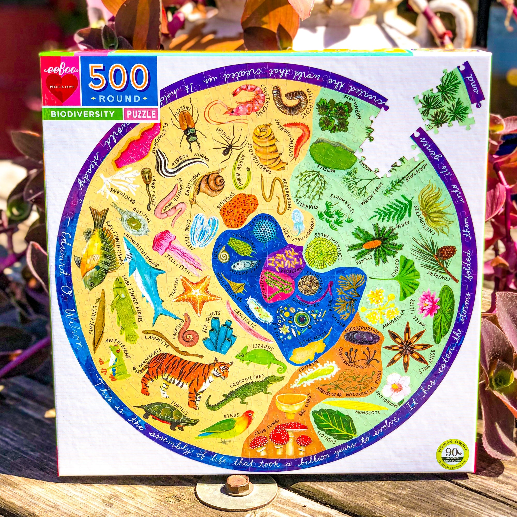 Biodiversity 500 Piece Round Jigsaw Puzzle - Walking Pants Curiosities