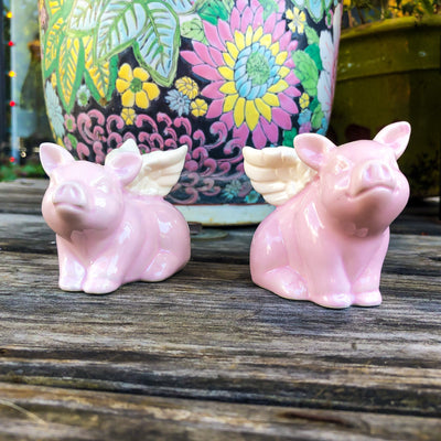 Buy Flying Pigs With Wings Salt and Pepper Shakers from Walking Pants Curiosities, the Most un-General Gift Store in Downtown Memphis, Tennessee!