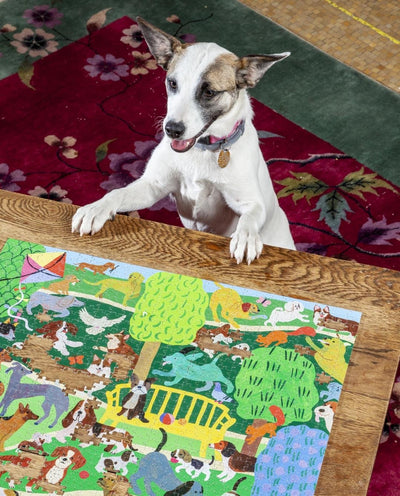 Buy Dogs in the Park 1000 Piece Jigsaw Puzzle from Walking Pants Curiosities, the Most un-General Gift Store in Downtown Memphis, Tennessee!