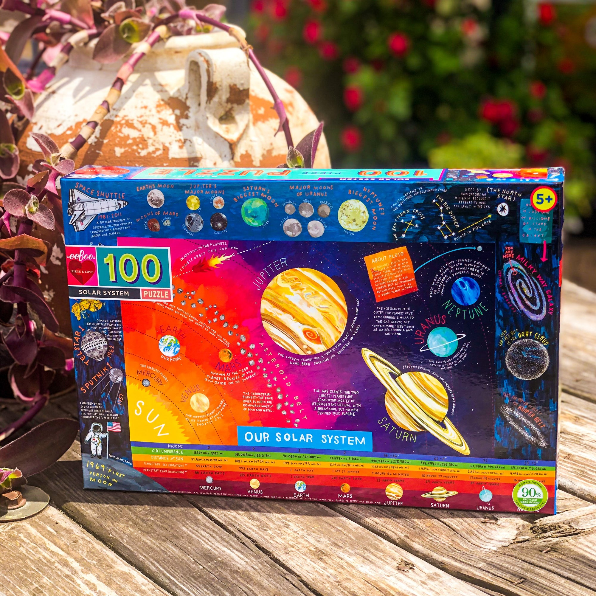 Solar System 100 Piece Jigsaw Puzzle - Walking Pants Curiosities