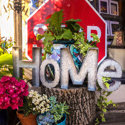 Buy Home Wall Decor Metal Cut-Out from Walking Pants Curiosities, the Most un-General Gift Store in Downtown Memphis, Tennessee!