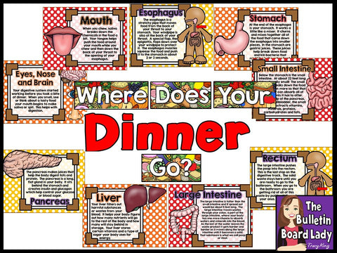 Where Does Your Dinner Go?  Bulletin Board