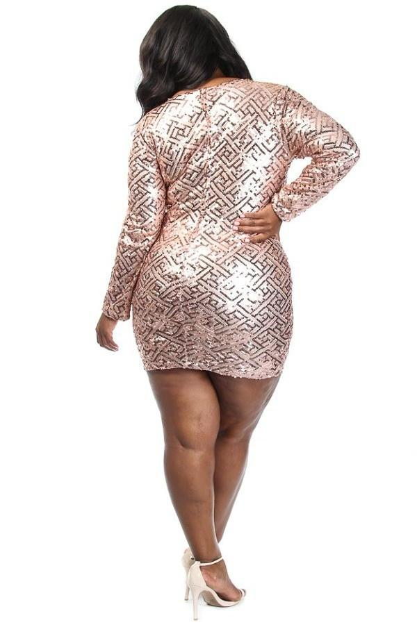 Sparkle In Lovely Sequins Plus Size Dress – slayboo