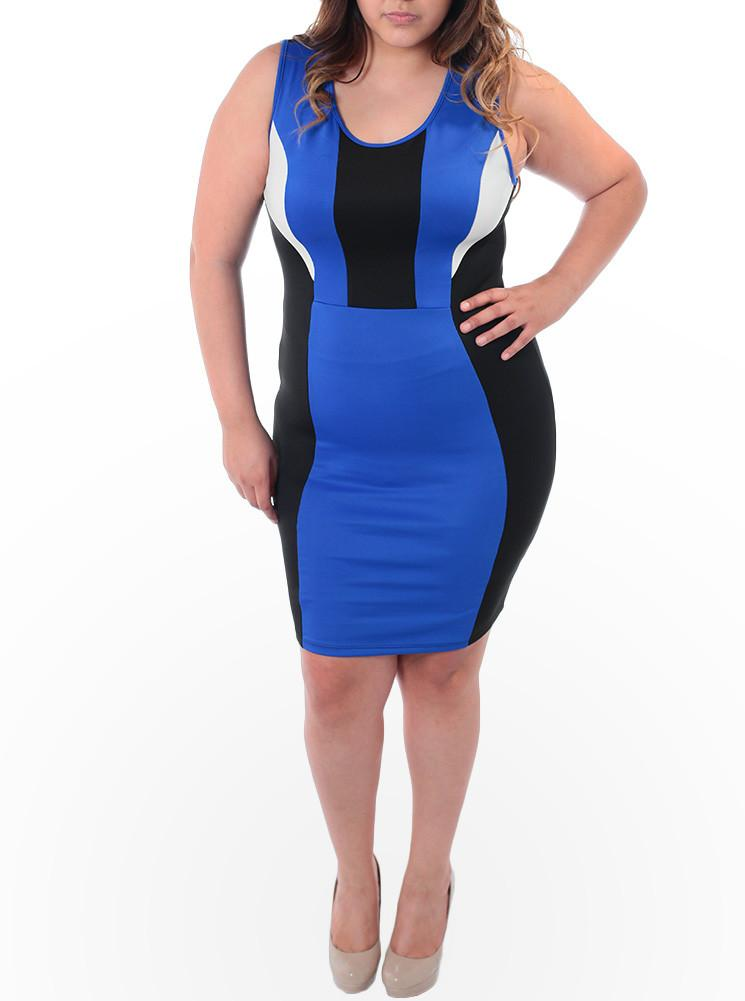 Plus Size Color Contrast Scuba Mesh Blue Dress