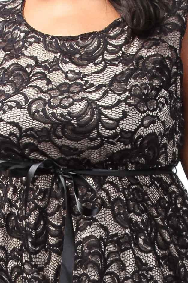 Plus Size Sexy Lace Overlay A-line Dress