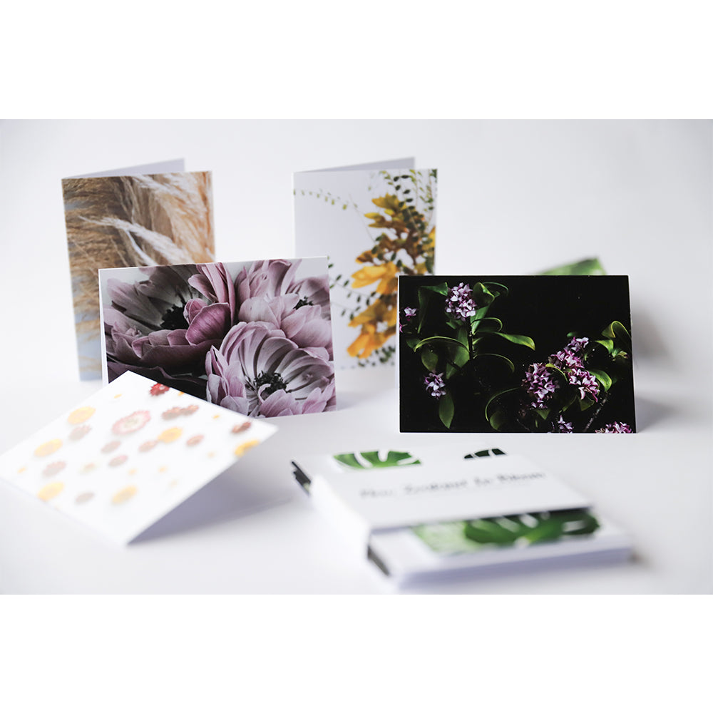 New Zealand In Bloom - 10 Card Set