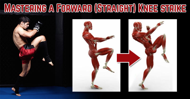 Mastering a Forward (Straight) Knee strike