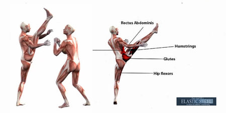 Anatomy Kinesiology of the Axe Kick