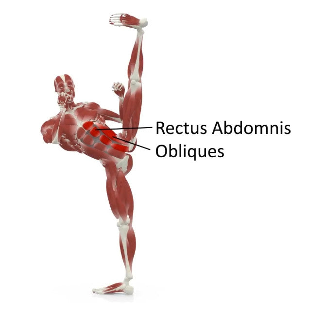 elasticsteel kicking side kick paul zaichik muscles rectus abdominis obliques core