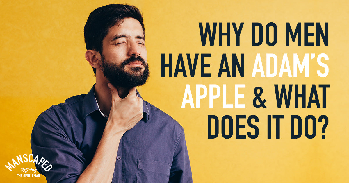 Why Do Men Have an Adam's Apple and What Does It Do?