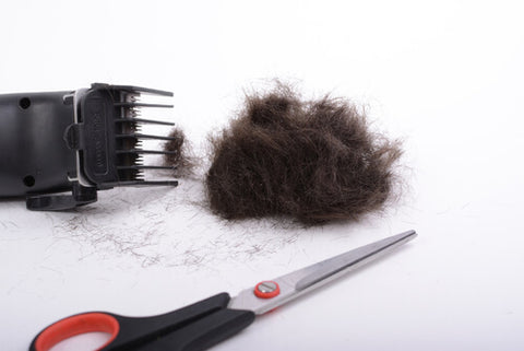 Hair Clippings Next To A Trimmer And Scissors