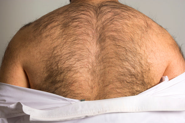 A Man's Hairy Back