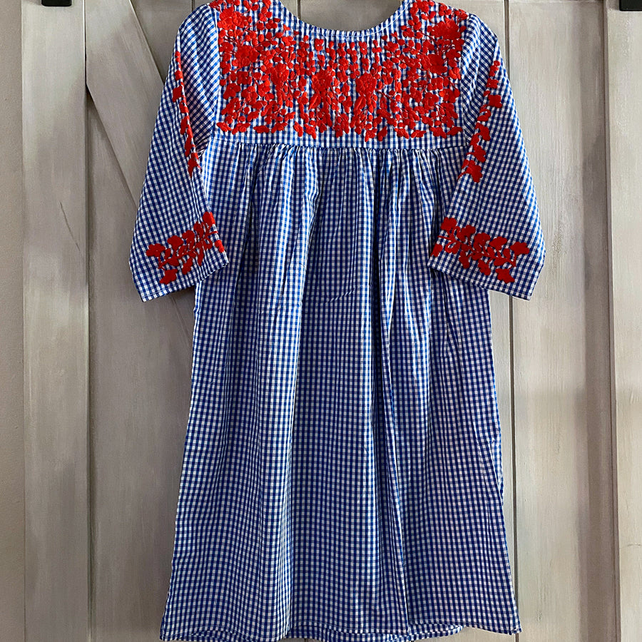 Red, White, & Blue Gingham Saturday Dress