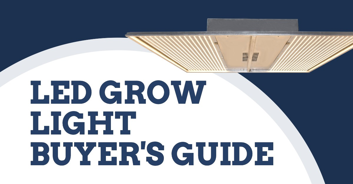 LED Grow Light Buyer's Guide (2021)