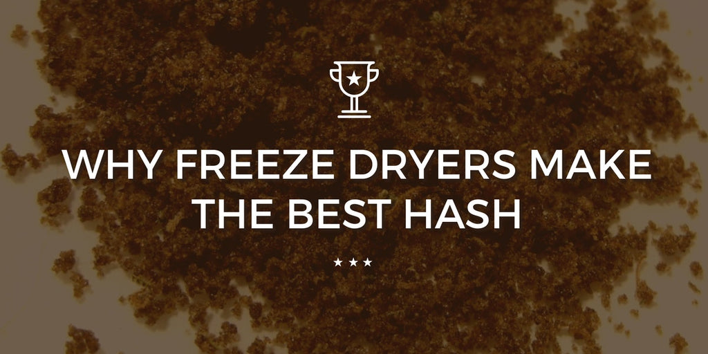 Why Freeze Dryers Make the Best Bubble Hash | Trimleaf