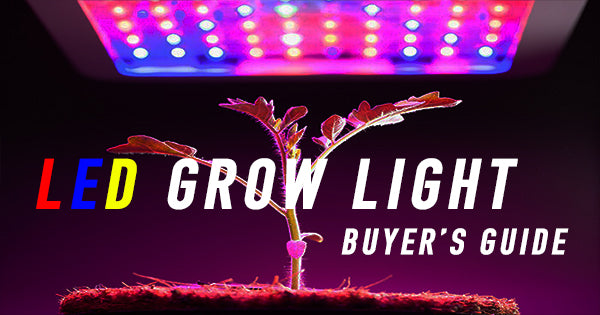 Growing Indoors with LED Grow Lights? Here are 4 Things to Consider