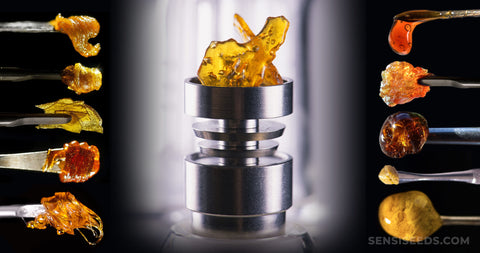 Cannabis Concentrates You Can Dab