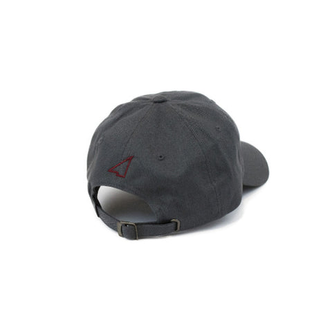 The Lifestyle Dad Hat - Grey