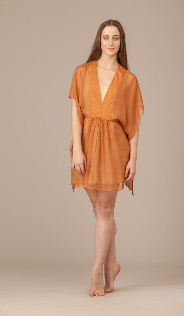 Short Erline Silk Dress (with slip). WAS $299. NOW $80.