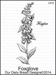 Foxglove stamp by Our daily bread designs